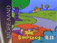 MNet Simpsons slide 1991