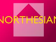 NORTHESIAN BIG STORY