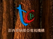 TCP ID - Woods - 1997 - Chinese