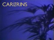 Carltrins 1993 ID 2