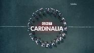GRT Cardinalia ID 2013 Footballers
