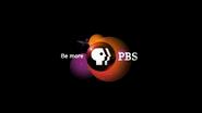 PBS black endcap - orange logo - 2016