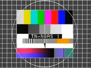 TN1 testcard NG 1980