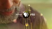 PBS System Cue Bluesman 2009