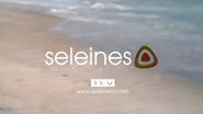 Seleines ID 1999 - Summer