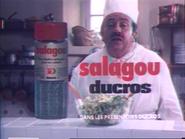 Salagou Ducros RLN TVC 1978