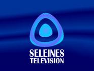 Seleines Television 1993