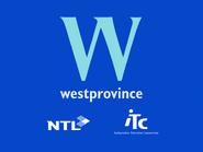 Westprovince startup slide 1995