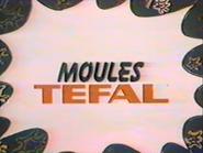 Moules Tefal TVC 1981