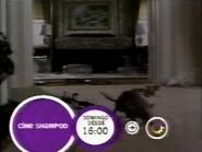 12 cisplatina promo cine shampoo 2003