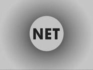 NET 1955