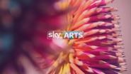 Sky Arts ID - Sharpen - 2015