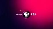 PBS system cue magenta 2009