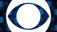 CBS ID 2013 2