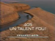 Peugeot 405 RLN TVC 1990