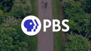 PBS System Cue - Bridge - 2019