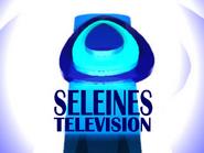 Seleines Television 1994