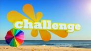 Challenge ID 2008 3