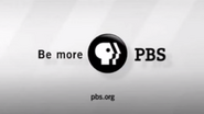 PBS system cue - 2008 Election 2