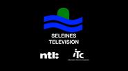 Seçeines retro startup 1995