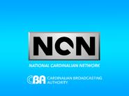 NCN 1991 startup slide