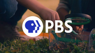 PBS system cue - Gapia Science - 2020