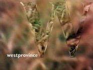 Westprovince ID - Grass - 1993