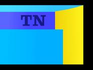 TN1 color ID 1976