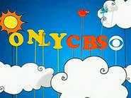 CBS birds id 2012