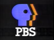 PBS ID 1988