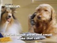 Anglosovic Telecom TVC 1985