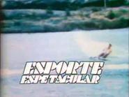 EE intro 1976 3