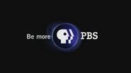 PBS closer - blue - 2002