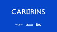 Carltrins startup slide 2015