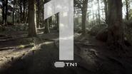 TN 1 ID Forest 2019