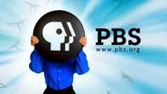 PBS system cue 1998 wide