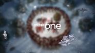 GRT One ID - Christmas 2011 2