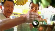 PBS System Cue - Strange Recipe - 2009