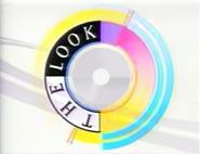 CBS 1991 template 1