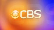 CBS 2007 orange