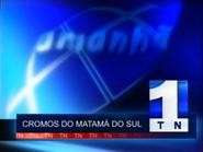 TN1 promo - Cromos do Matama do Sul - 1999
