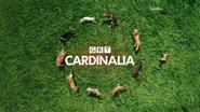 GRT Cardinalia Dogs ID 2013