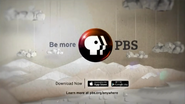 PBS system cue - Anywhere - 2013