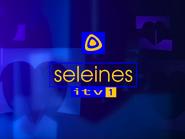 Seleines Television 2001
