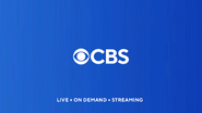 CBS 2020 blue 2