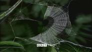 GRT Web 3