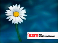 TN1 sponsorship billboard - TASM - 1999