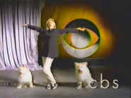 CBS ID 1995 3
