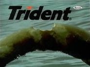 TN1 sponsorship billboard - Trident - 1999
