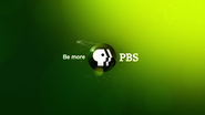 PBS system cue green 2009